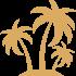 Palmier jaune